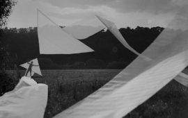 «Ni cygne ni lune» : œuvres tchèques (1950-2014)