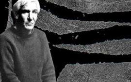 Raoul Ubac, photographe, peintre & sculpteur