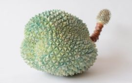 Les fruits étonnants de l'artiste Kaori Kurihara